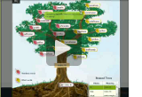 Root Tree video